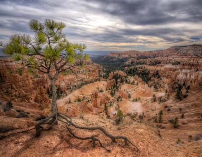 How to Edit Landscape Images in Photoshop – Bryce Canyons Guardian   Photoshop Tutorial
