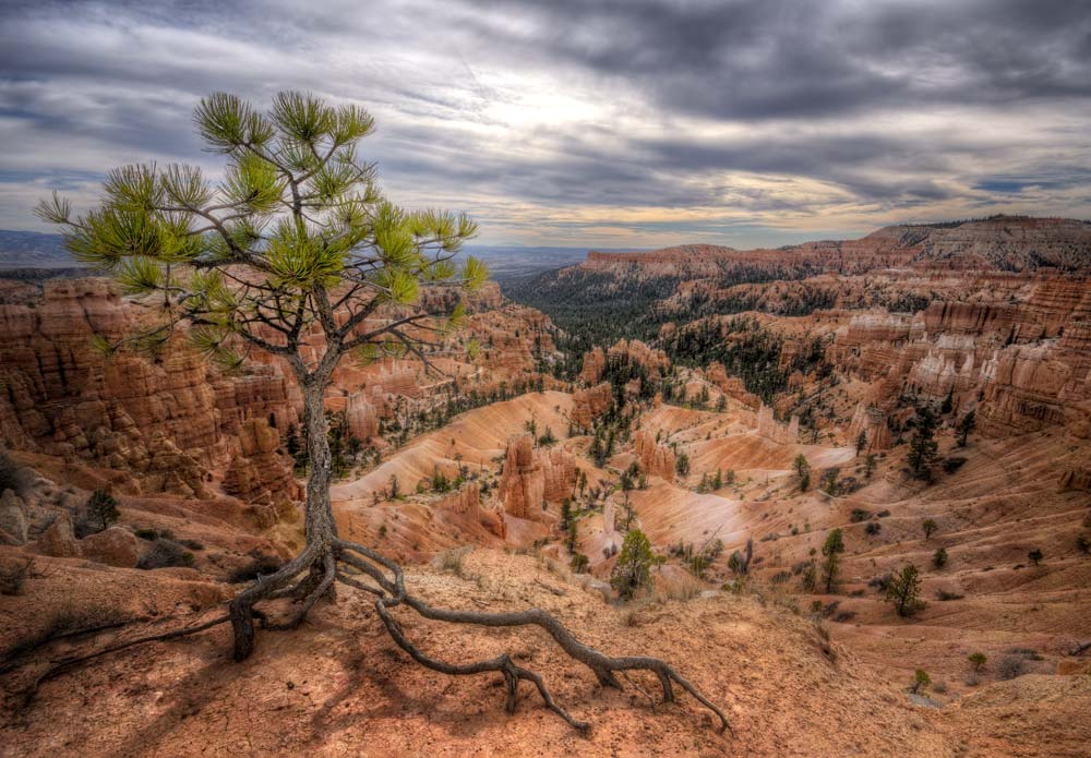 How to Edit Landscape Images in Photoshop - Bryce Canyons Guardian | Photoshop Tutorial