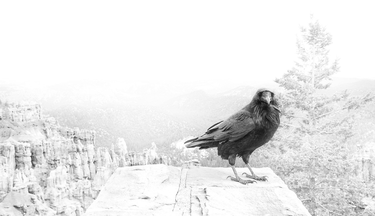 Ireland Bryce Canyon Raven Landscape photography letsimage