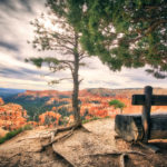 utah bryce canyon landscape photography