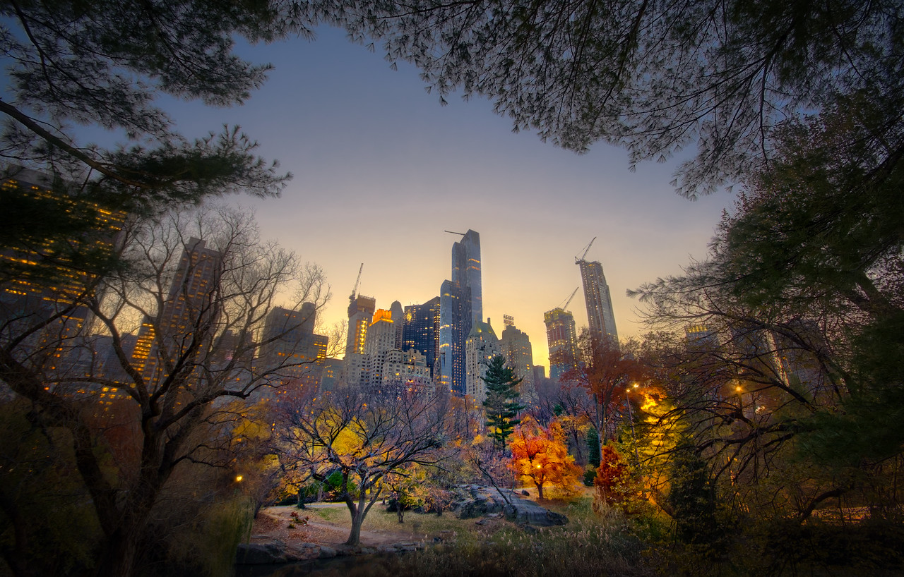 new York central park night skyline stunning
