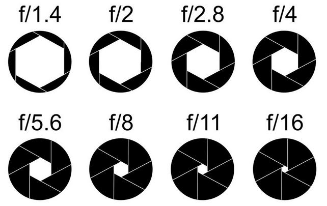 Understand Your Camera - Aperture and Aperture Priority