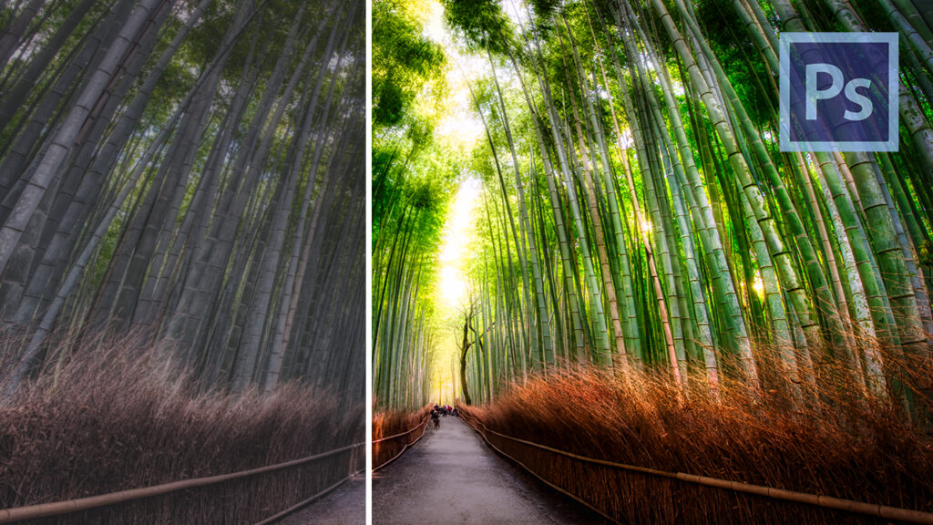 How To Edit Photos in Photoshop - Example: Never Sleeping Forest